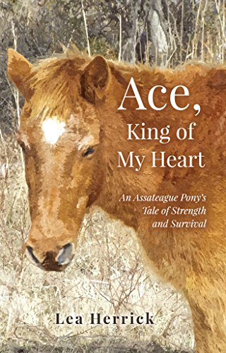 Ace, King of My Heart: An Assateague Pony's Tale of Strength and Survival (English Edition)