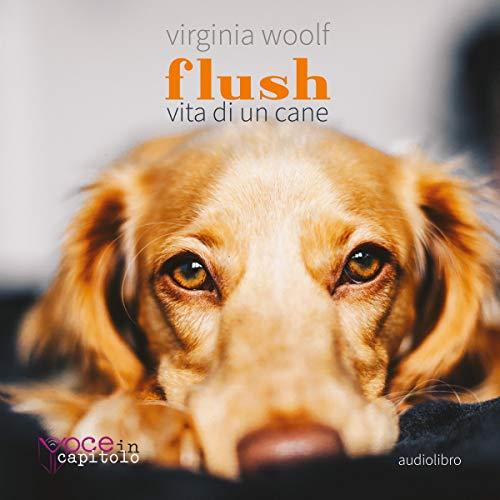 Flush: Vita di un cane