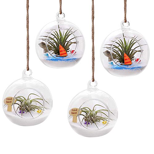 """T4U 4"""" Glass Hanging Plant Terrariums Tealight Holder - Pack of 4, Globe Air Plant Pot Container Planter for Succulent Cactus Fern, Candle Holder for Party Wedding Decor Birthday"""
