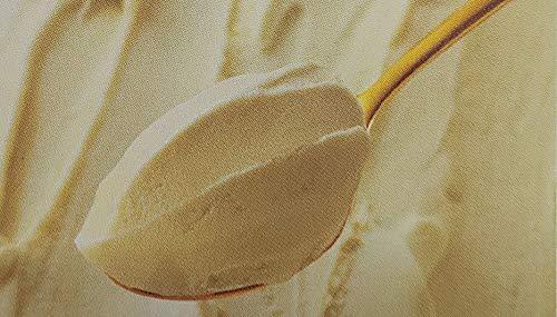 ロッテアイス プレミアム イルジェラート ピスタチオ 2L×2P 業務用 アイスミルク