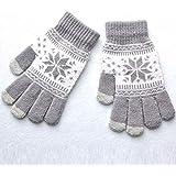 ニット手袋 女性ニット手袋スノーフレーク柄冬暖かい手袋は、スクリーン女性フルフィンガーソフトストレッチニットミトンをタッチ (Color : Grey)