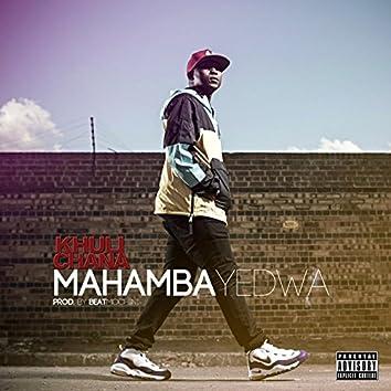 Mahamba Yedwa