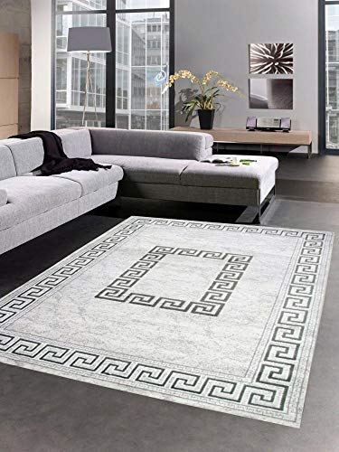 CARPETIA Teppich Wohnzimmerteppich mit Glitzer grau Größe 160x220 cm