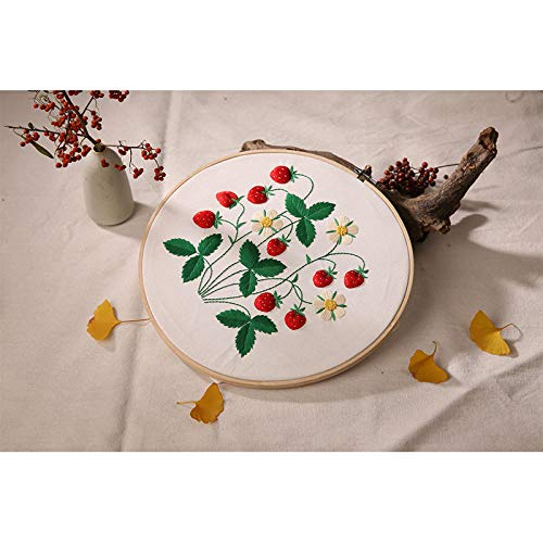 DIY Cross Stitch Embroidery Kit Herbal Berry Handmade Needlework for Beginners Ribbon Painting Embroidery Home Decoration