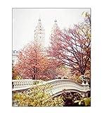 New York City Autumn Picture Central Park Photo Bow Bridge Wall Art 8x10 inch Print