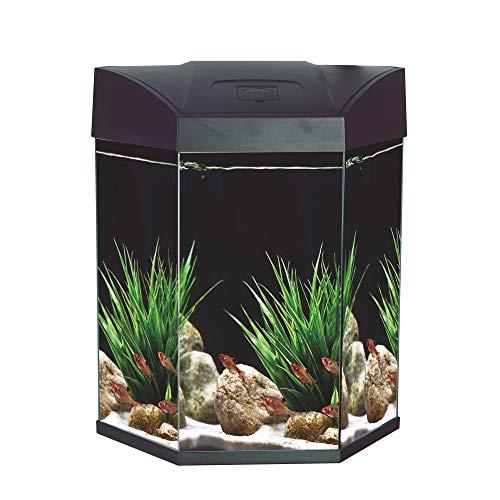 Sechseck-Komplett-Aquarium 70 L EC Hexa mit LED-Beleuchtung, Filter u. Pumpe, schwarz