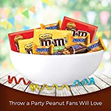 SNICKERS & M&M'S Peanut & Peanut Butter Lovers Fun Size Chocolate Candy Variety Mix 35.04-Ounce 60-Piece Bag