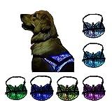 LED Light up Dog Harness Cat Adjustable Vest Harnesses Fiber Optic Glowing Pet Clothes ,7 Light Colors (L, Blue)