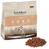 Venandi Animal - pienso seco para Gatos - Salmón como pienso seco - Completamente Libre de Cereales - 300 g