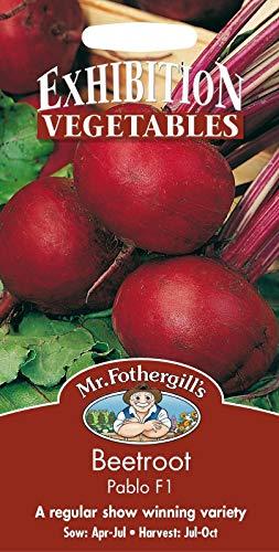 Samen-Paket: Herr Fothergills - Pictorial Packet - Gemüse - Rote-Bete-Pablo F1-150 Samen