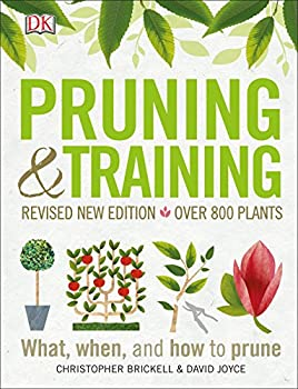 Pruning and Training Revised New Edition  What When and How to Prune