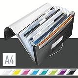 Leitz A4 Projektmappe für bis zu 200 Blatt, 6 Fächer mit Taben zur Ordnung des Inhalts,...