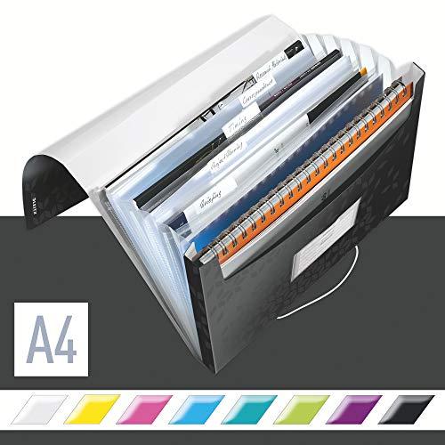 Leitz A4 Projektmappe für bis zu 200 Blatt, 6 Fächer mit Taben zur Ordnung des Inhalts, Gummibandverschluss, Schwarz, WOW, 45890095