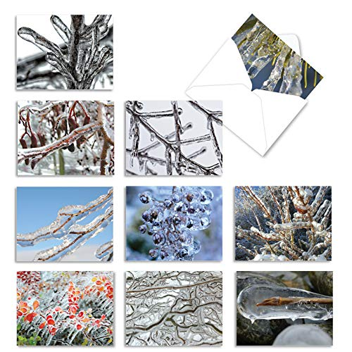 The Best Card Company - Box of 10 Holiday Note Cards - Christmas Cards Assorted, Xmas Trees and Landscapes (4 x 5.12 Inch) - Nature On Ice M2279