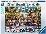 Ravensburger Puzzle 2000 Piezas, Animales salvajes, Puzzle Animales, Puzzle para Adultos, Rompecabezas Ravensburger de óptima calidad