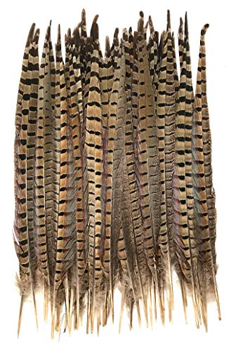 "American Feathers Ringneck Pheasant Tail Feathers 14-16"" - 1 Ounce Pack"