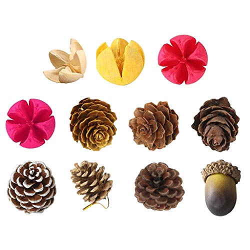 Serenable 11x Natural Colorful Pine Cones for Decorations Christmas Ornaments