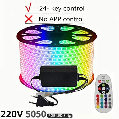 220V LED Streifen, 12V RGB SMD 5050 Band Telefon APP und Fernbedienung wasserdicht flexible Licht, Außenraumdekoration Licht (Wattage : 220V 5050 RGB 24Key)