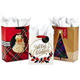 Hallmark Christmas Gift Bag Assortment with Tissue Paper (Pack of 3 Gift Bags: 1 Large 13', 2 Extra Large 15') Gold, Plaid, Santa
