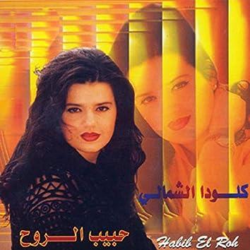 Ya Habib El Roh