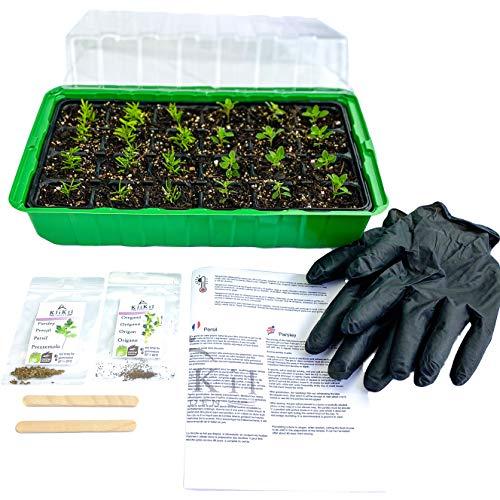 KliKil Grow Box Seedling Germinator Kit mit 1 Growbox, 1 Paar Handschuhen, 2 Holzetiketten, 2 Beuteln ausgewählter Bio-Petersilie ohne GVO und Oregano-Samen