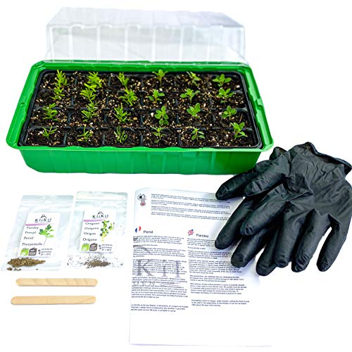 KliKil Grow Box Seedling Germinator Kit mit 1 Growbox, 1 Paar Handschuhen, 2 Holzetiketten, 2 Beuteln ausgewählter Bio-Petersilie ohne GVO und Oregano-Samen