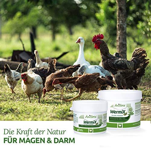 WermiX Pulver für Hühner - 5