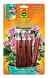 Compo Fertilizante Fuerza Plus, Mezcla de nutrientes para plantas fuertes, 3 monodosis de 10 ml, 24.3x14.4x0.8 cm, 2034602011