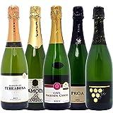 本格シャンパン製法の泡5本セット((