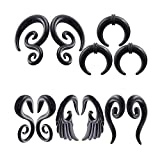 DELOVE 10 Pieces Ear Stretching Kit,Acrylic Spiral Snail Taper Plugs Tunnel Ear Stretcher Expander Kit Plugs 14-00 Gauges (5 Pairs of 3mm(8G))