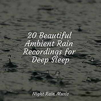 20 Beautiful Ambient Rain Recordings for Deep Sleep