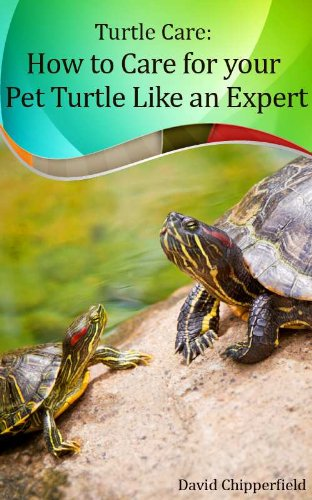 Turtle Care: How to Care for Pet Turtles Like an Expert. (Aquarium and Turtle Mastery Book 5) (English Edition)