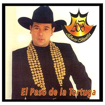 El Paso De La Tortuga