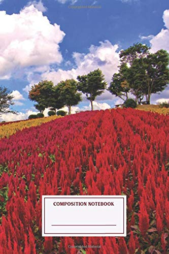 Composition Notebook: Field Of Colorful Plumed Cockscomb Flowers A Field Of Journal Note Taking System for School and University