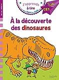 J'apprends à lire avec Sami et Julie - Sami et Julie à la découverte des dinosaures : Niveau CE1