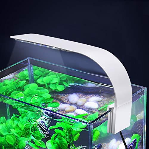 WEAVERBIRD Éclairage pour aquarium X5 Jungfrau 24 LED...