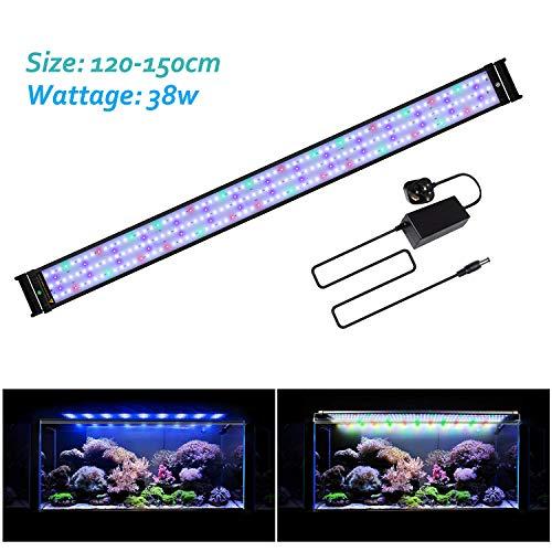 CIANO Aquarium Lighting CLA Éclairage//Convertisseur pour Aquariophilie Noir 60 CIA058094