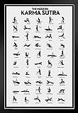 Pyramid America Modern Karma Sutra Chart Black Wood Framed Art Poster 14x20