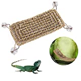 Hamaca de lagarto de reptil, natural con ventosas, decoración del hábitat Reptiles para lagarto, escalada, camaleón, gecko, serpientes, tortuga