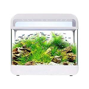 Beginner Level Aquarium Goldfish Tank Aquarium Small Mini Glass Fish Tank Home Desktop Creative Ecological F...