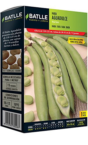 Semillas Leguminosas - Haba\n Aguadulce 1Kg - Batlle