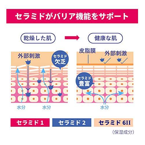 【Amazon.co.jp限定】ロゼットセラミドローション200mL_AZ