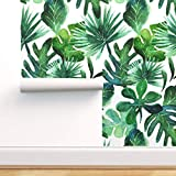 Spoonflower Pre-Pasted Removable Wallpaper, Monstera Palm Jungle Baby Botanical Tropical Leaves...