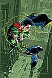 Robin: To Kill a Bird