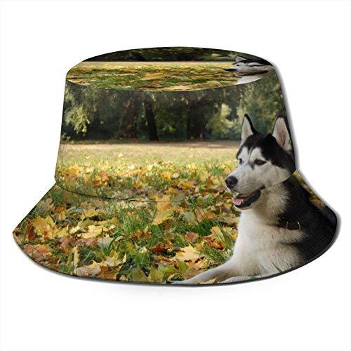 NCH UWDF Cachorro Jugando en el Parque Bucket Sun Hat para Hombres...