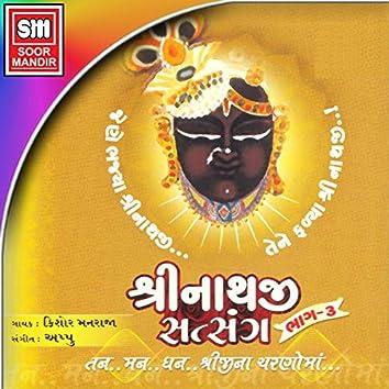 Shreenathji Satsang, Pt. 3