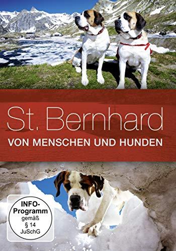 St. Bernhard - Von Menschen und Hunden