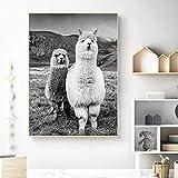 ganlanshu Animal Wall Art Cute Wall Decoration Animal Picture Alpaca Photography Lienzo Decoración,Pintura sin Marco,45x67cm