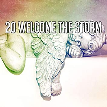20 Welcome The Storm