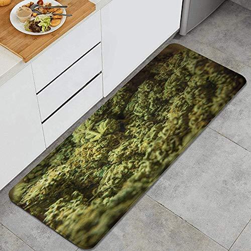 QIUTIANXIU Green License Cannabis Marijuana Sativa Heads 420 Agriculture Bud Alfombrillas de Cocina Antideslizantes Felpudo Lavable Juego de Alfombras de Microfibra